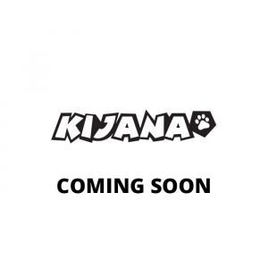 Kijana buggy de playa eléctrico para niños Conquerer